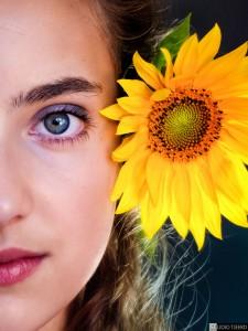 Claartje (0401) Sunflower
