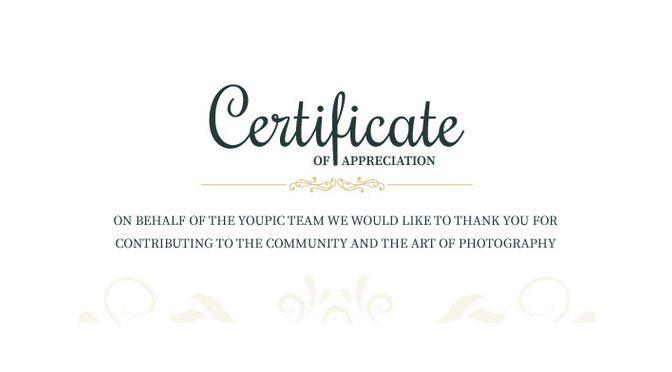 Certificate of Appreciation ontvangen